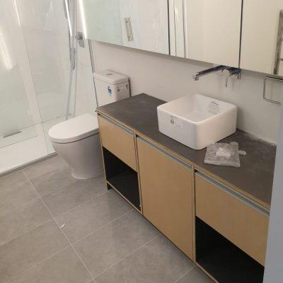 Bathroom vanity with white sink